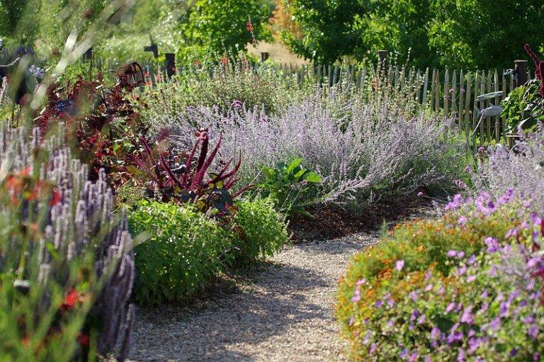 лечебный сад