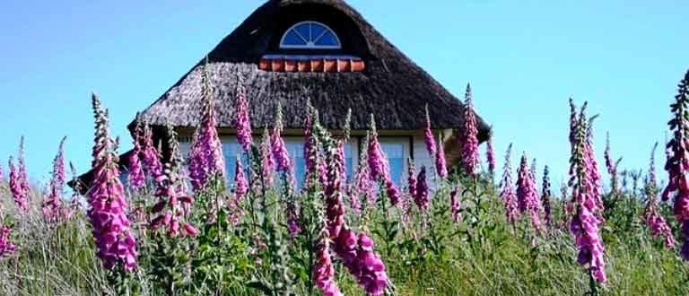 Уютный-домик-в-деревне