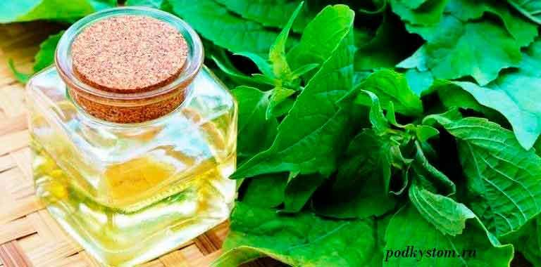 Эфирное-масло-базилик